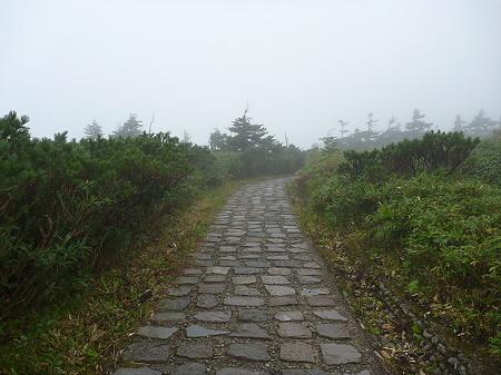 八幡平山頂付近15(2011.9.24)