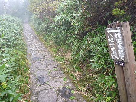 八幡平山頂付近17(2011.9.24)