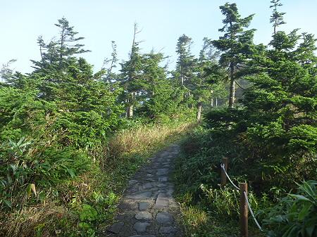 八幡平山頂付近23(2011.9.24)