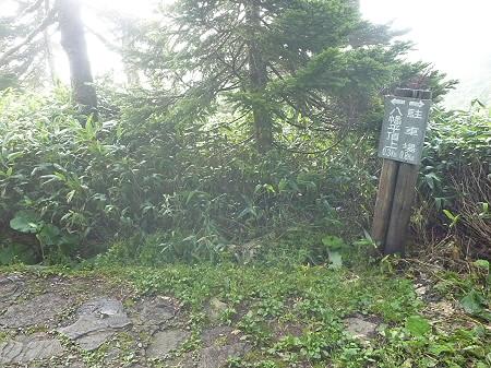 八幡平山頂付近27(2011.9.24)