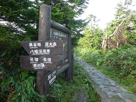 八幡平山頂付近31(2011.9.24)