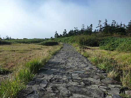 八幡平山頂付近32(2011.9.24)