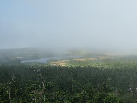 八幡平山頂付近再び15(2011.9.24)