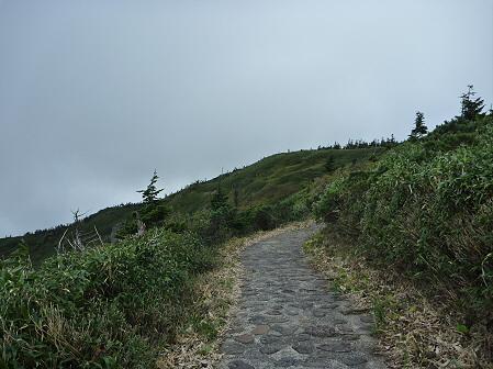 八幡平山頂付近再び36(2011.9.24)