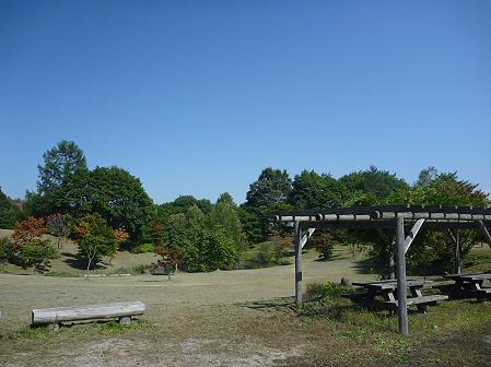 青空のさくら公園01(2011.9.29)