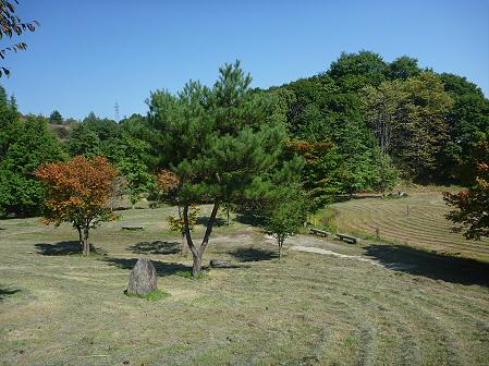 青空のさくら公園09(2011.9.29)