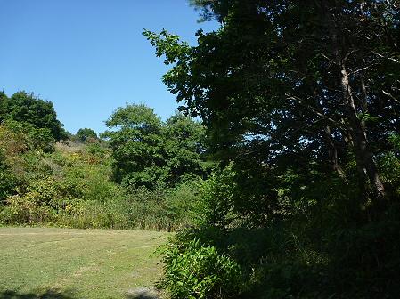 青空のさくら公園12(2011.9.29)