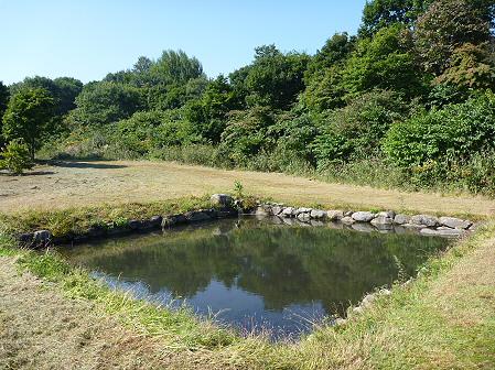 青空のさくら公園13(2011.9.29)