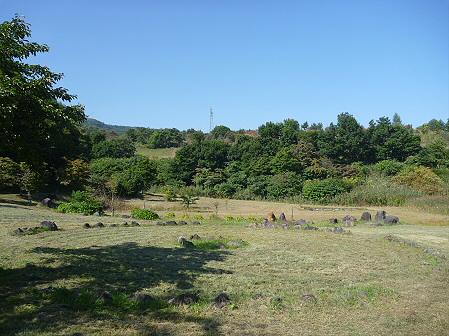 青空のさくら公園15(2011.9.29)