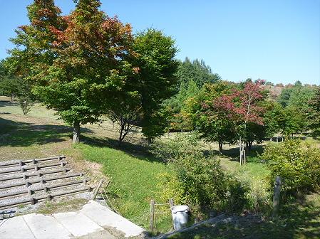 青空のさくら公園20(2011.9.29)