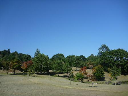 青空のさくら公園21(2011.9.29)
