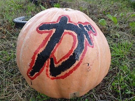 かぼちゃ03(2011.10.3)