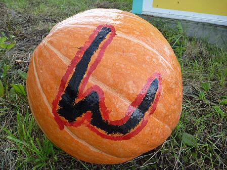 かぼちゃ04(2011.10.3)