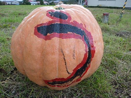 かぼちゃ07(2011.10.3)