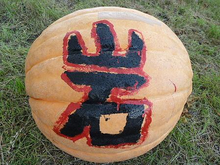 かぼちゃ08(2011.10.3)