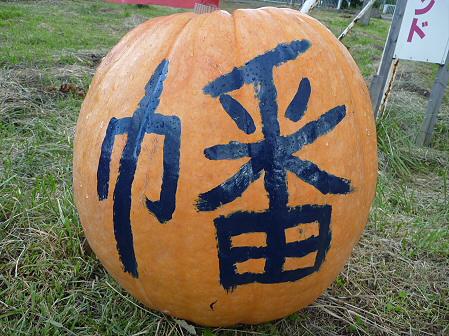 かぼちゃ15(2011.10.3)