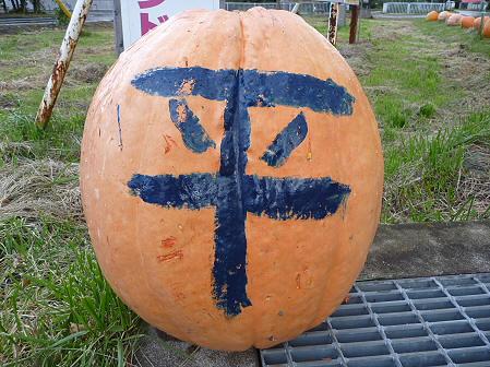 かぼちゃ16(2011.10.3)