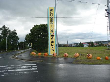 かぼちゃ18(2011.10.3)