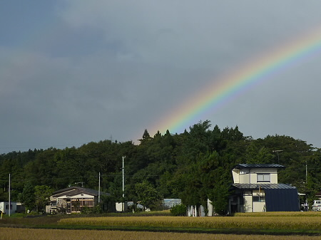 虹の八幡平06(2011.10.5)