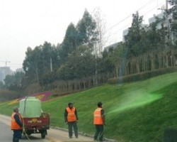 The grass really IS greener in China but only because they paint it
