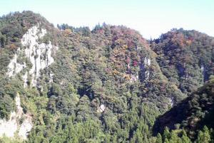 我が家から眺める、秋景色