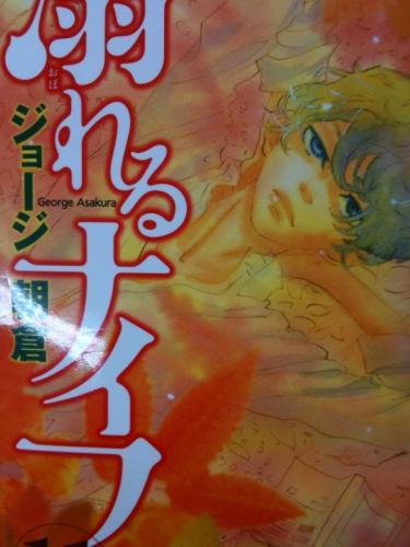 1_20101113214647.jpg
