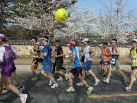 BL110409慶州さくらマラソン1-9RIMG0147