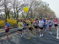 BL11-04-09慶州さくらマラソン2-1RIMG0149