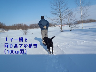 b20130216-P2160231.jpg