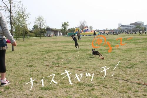 淡路島-039