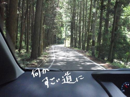 2011-7 キャンプ-007
