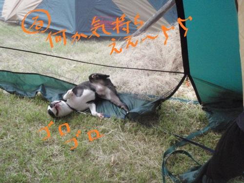 2011-7 キャンプ-032