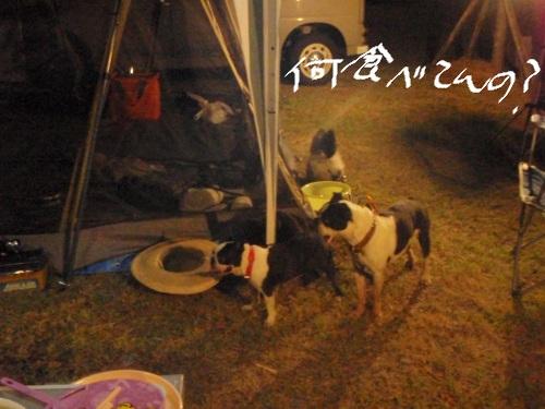 2011-7 キャンプ-062