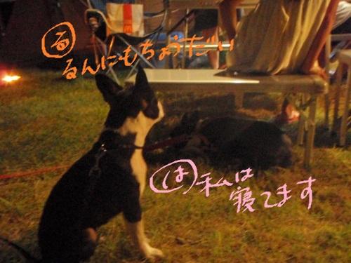 2011-7 キャンプ-064