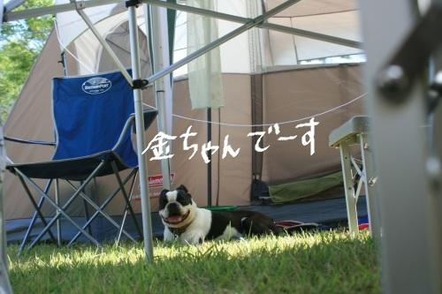 2011-7 キャンプ-114