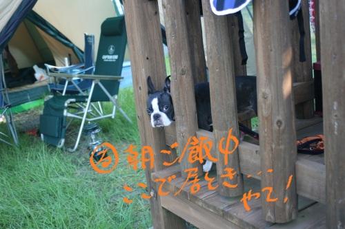 Camp 2011-135
