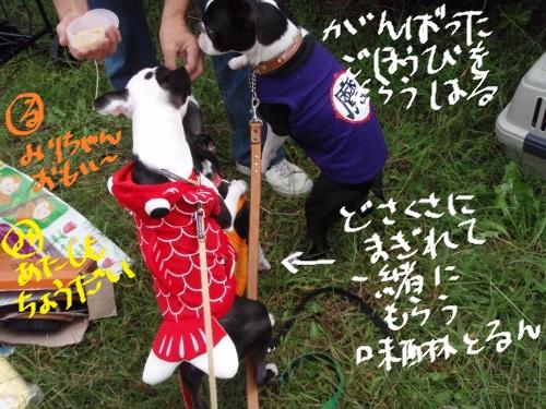 オフ会 秋 2011-30