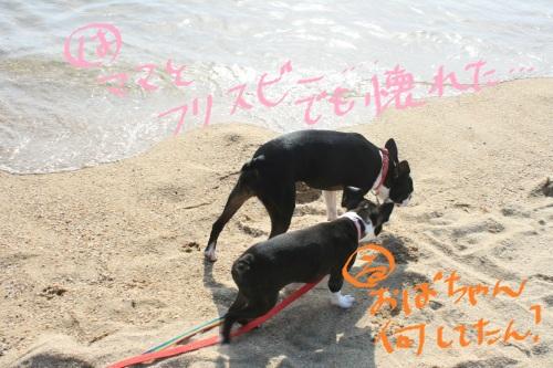 IMG_3585.jpg