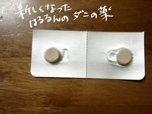 P6100046.jpg