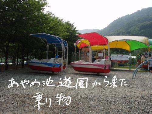 P7030061.jpg