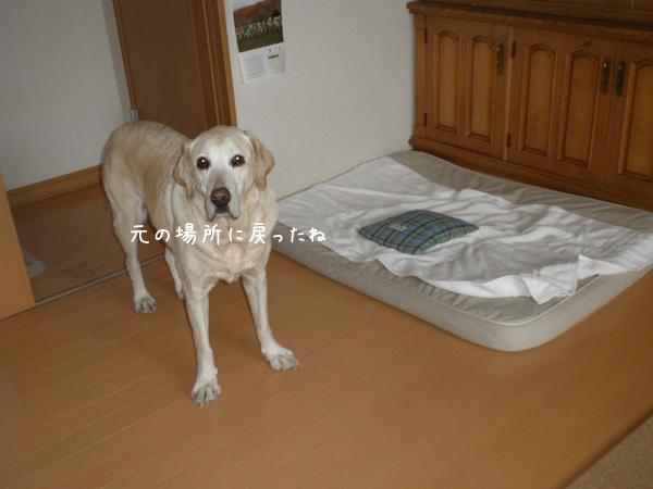 bed_201312062138550e2.jpg