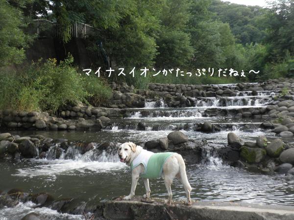 kawa1_201308162319115e5.jpg