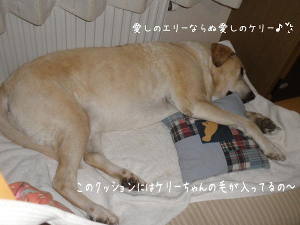 kerimakura_20140114205022407.jpg