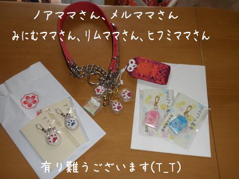 omamori_201308222225399c4.jpg