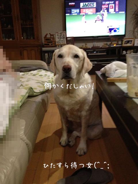 s_201308302133036ba.jpg
