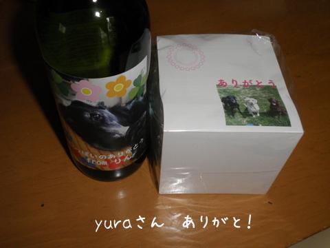 yura.jpg