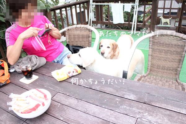 yura_201308222224024a6.jpg