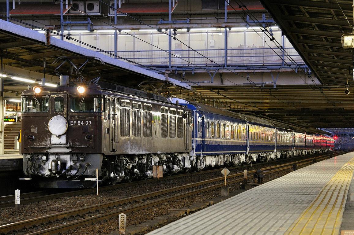 2010.01.23 0631_34(1) 大宮 EF64 37