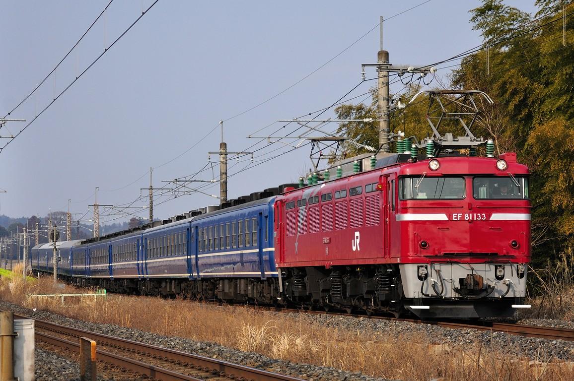 2011.02.05 1446_52(1) 片岡~蒲須坂 回9502レ EF81 133+12系+24系