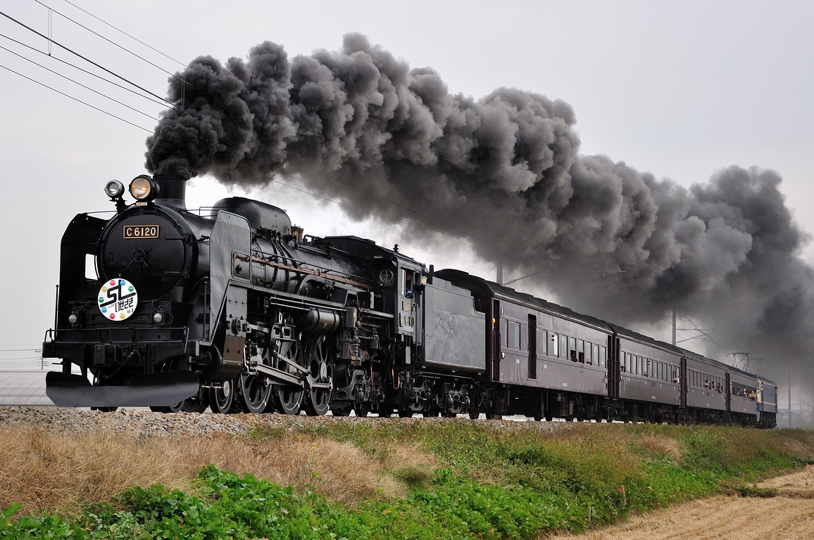 2011.11.03 1148_18(1) 駒形~伊勢崎 C61 20+在来形客車+EF65 501ts